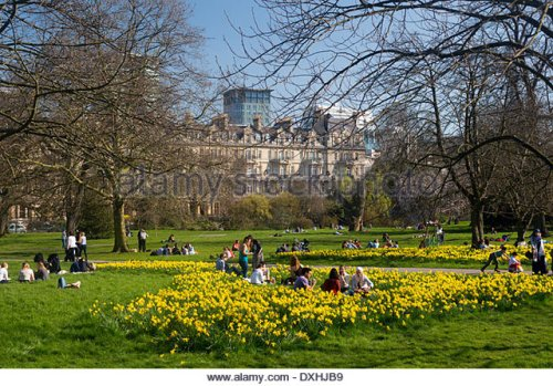 regents-park-in-spring-with-daffodils-and-blossom-on-trees-people-dxhjb9