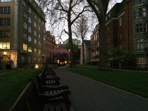 mount-street-gardens